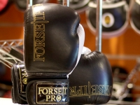 Forseti-Pro Boxing Gloves - Mark I