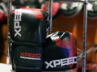 Xpeed Boxing Gloves - Professional